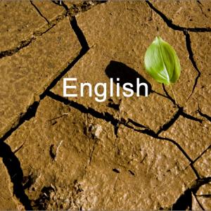 English link